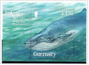 Guernsey Sc 1124 2011 Blue Whale stamp sheet used