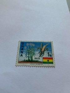 Ghana 286