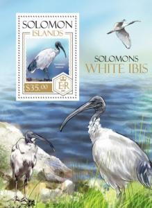 SOLOMON ISLANDS 2013 SHEET WHITE IBIS BIRDS slm13816b