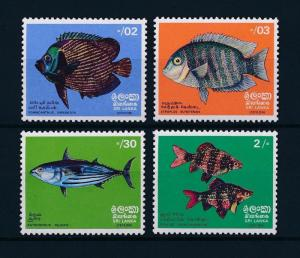 [37855] Sri Lanka 1972 Marine life Fish MNH