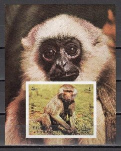 Sharjah MNH S/S 1017 Baboon Monkey Mammals 1972