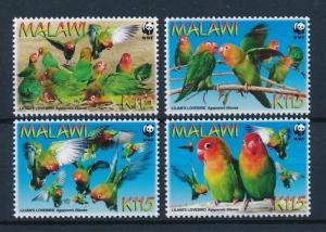 [53527] Malawi 2009 Birds Vögel Oiseaux Ucelli WWF Parrots MNH
