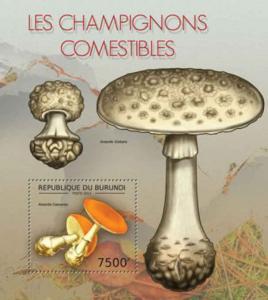 Burundi - Mushrooms - Souvenir Sheet - 2J-425