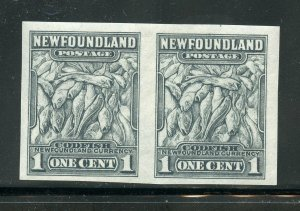 NEWFOUNDLAND SCOTT#253a IMPERF PAIR MINT NEVER HINGED -SCOTT $150.00 FOR HINGED