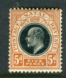NATAL; 1902 early Ed VII issue fine Mint hinged Shade of the 5d. value