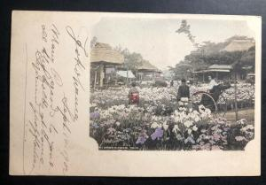 1902 Yokohama Japan Postcard Cover to New York USA Via Vancouver Iris Garden