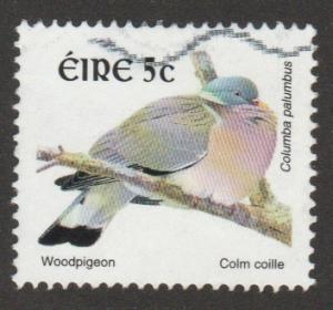 1105 or 1357 Woodpigeon