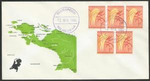 NETHERLANDS NEW GUINEA 1961 cover PIRIMAPOEN cds...........................52884