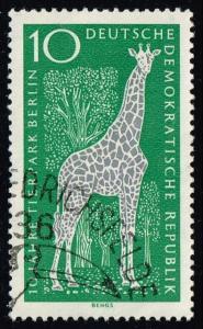 Germany DDR #759 Giraffe; CTO (0.25)