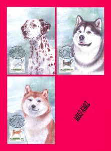 KYRGYZSTAN 2020 Nature Fauna Farm Domestic Animals Pets Dogs 3 Maxicards Cards