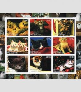 TAJIKISTAN 2000 Domestic Cats Sheet (9) Imperforated Mint (NH)