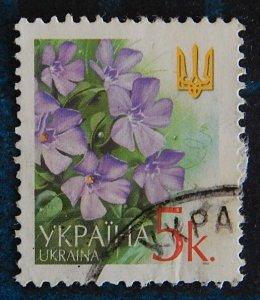 Flowers, Ukraine, (2562-Т)