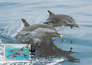 Niue 1993 Maxicard Sc #653 75c Pantropical spotted dolphin WWF