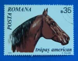 Horse, 1970, Europ, Romania, №58-T-2