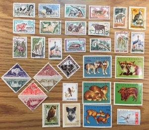 USPS Wildlife Stamp Collector Starter Kit