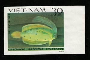 Fish 30Xu (TS-236)