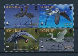 [53521] Montserrat 2010 Birds Vögel Oiseaux Ucelli WWF Reddish Egret MNH