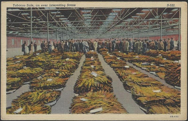 USA Tobacco Sale Unused Postcard