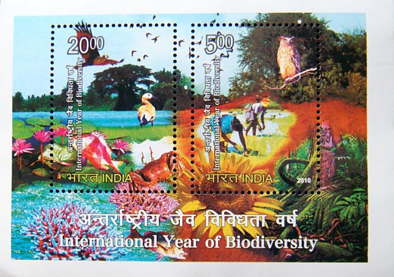 India MNH S/S 2428a International Year Of Biodiversity 2010
