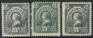 NEWFOUNDLAND 1890 QV 3C  - 3 DIFFERENT SHADES