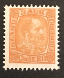 Iceland 1902-04 #34 MNH, CV $7.00