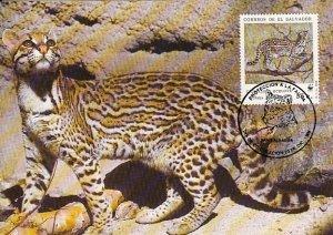 El Salvador 1988 Maxicard Sc #1194d 55c Ocelot WWF