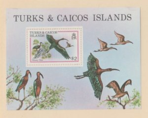 Turks & Caicos Scott #430 Stamps - Mint NH Souvenir Sheet