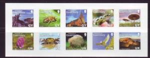 Guernsey Sc 925 2007 Guernesiase stamp sheet mint NH