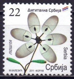 Serbia. 2011. 430. Flowers flora. MNH.