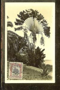 NORTH BORNEO (P1106B) PPC WITH STAMP CANCELLED BUT NOT SENT