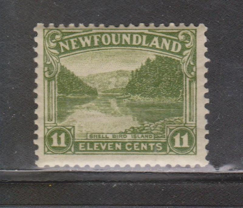 NEWFOUNDLAND Scott # 140 - Mint Never Hinged Shell Bird Island Issue