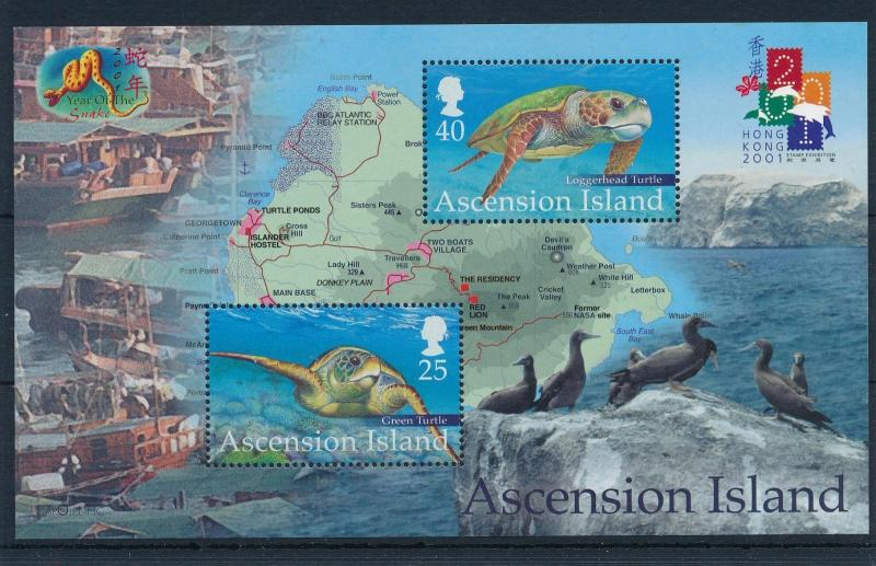 [52472] Ascension 2001 Marine life Turtles Map MNH Sheet