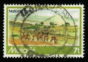 Animal Malawi (T-5129)