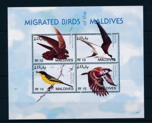 [38211] Maldives 2007 Birds Vögel Oiseaux Ucelli   MNH Sheet