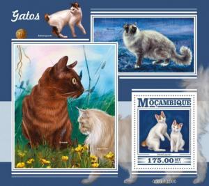 Mozambique MNH S/S Cats MEOW!!! MEOW!!!!  2015