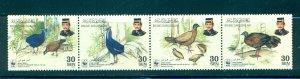 Brunei - Sc# 574. 2001 Birds. Strip of 4. MNH $3.50.
