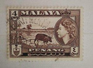 Malaya Penang 1957 Queen Elizabeth II & Local Motives Ricefield used