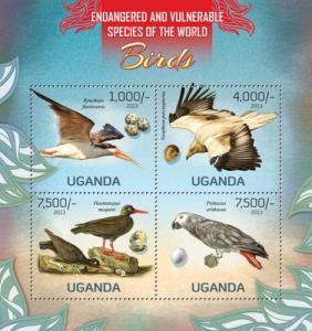 UGANDA 2013 SHEET BIRDS AND EGGS ugn13115a