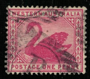Western Australia, Postage One Penny, 1890-1893, Black Swan, Michel 34 (Т-8452)