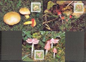 Liechtenstein 2000 Mushrooms 3 Maxi Cards FDC