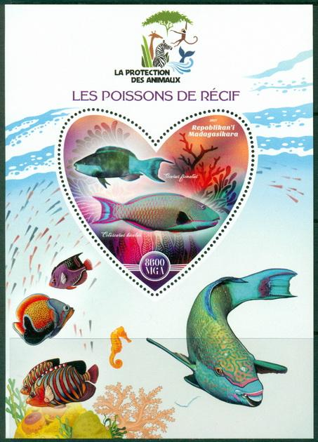 MADAGASCAR - 2017  - Fauna, Fishes - Perf Souv Sheet   - MNH