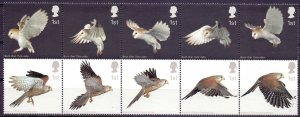 Great Britain. 2003. l 2327-36. Owls fauna. MNH.