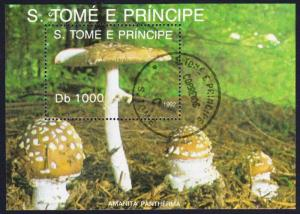 Sao Tome Fungi Mushrooms MS CTO SC#1061