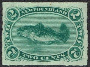 NEWFOUNDLAND 1876 CODFISH 2C ROULETTED
