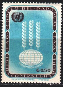 Paraguay. 1963. 1210 from the series. United Nations, food organization. MNH.