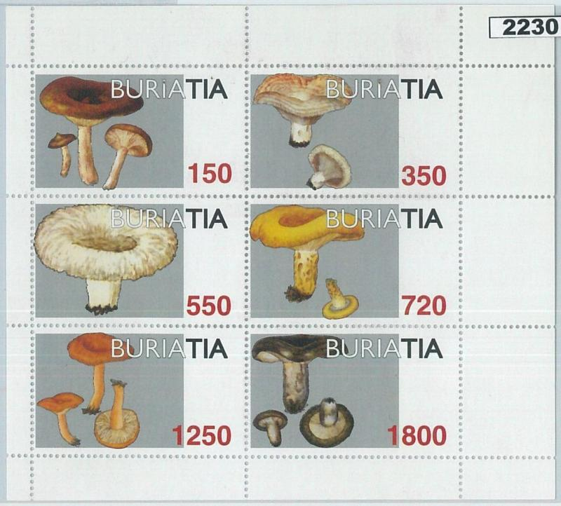 2230- RUSSIAN STATE, MINIATURE SHEET: Mushrooms