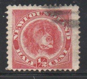 Newfoundland Sc 56 1897 1/2c rose red dog stamp used