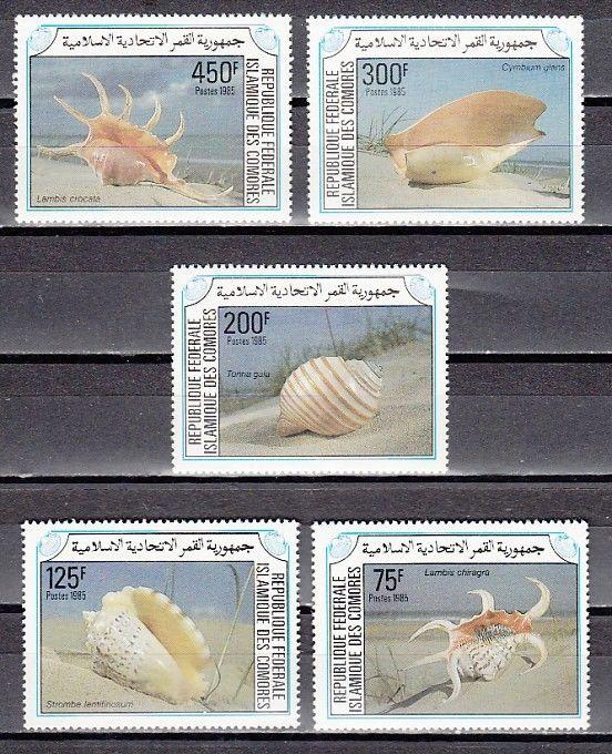 Comoros., Scott cat. 609-613. Sea Shells issue.