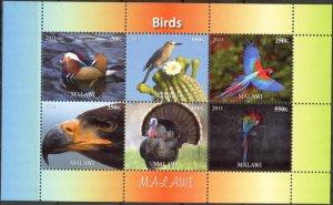 Malawi 2011 Birds (13) MNH Cinderella !