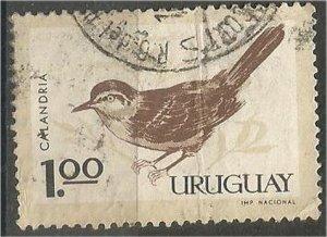 URUGUAY, 1963, used 1p , Birds. Scott 697